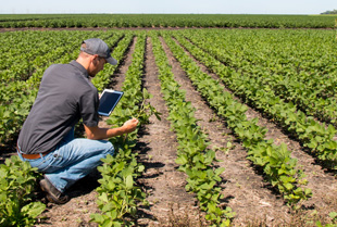 Agriculture Law - South Dakota
